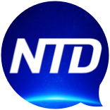ntd-logo-comment.png