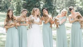 Bridesmaids carry rescued pups instead of flowers, thus adding a beautiful yet compassionate cause to the wedding!