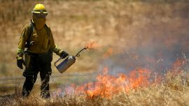 Firefighters make headway against California blaze; might take two weeks to control