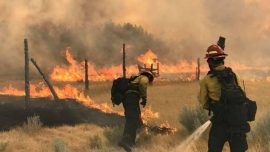 Crews gain ground against Montana wildfire, largest in U.S.