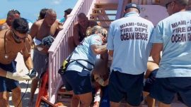 Shark bites Florida man on both legs, first unprovoked attack in decades
