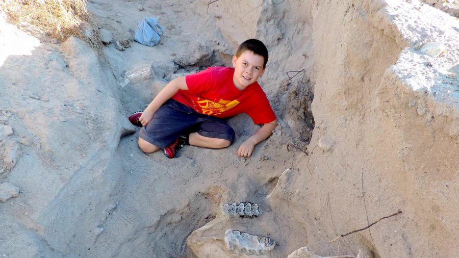 Iowa Teenager Finds Prehistoric Mastodon Jaw Bone