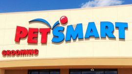 Pit Bull Bites, Seriously Injures PetSmart Worker During Routine Grooming Session