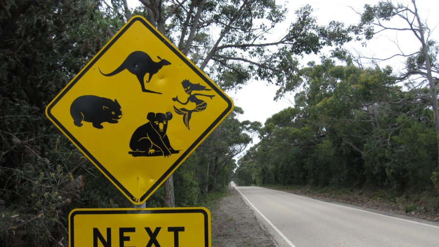 Multilingual Road Signs for Tourists in WA