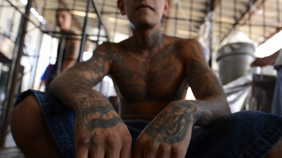 MS-13 Gang Member Sentenced to 50 Years for Murder of 14-Year-Old Girl