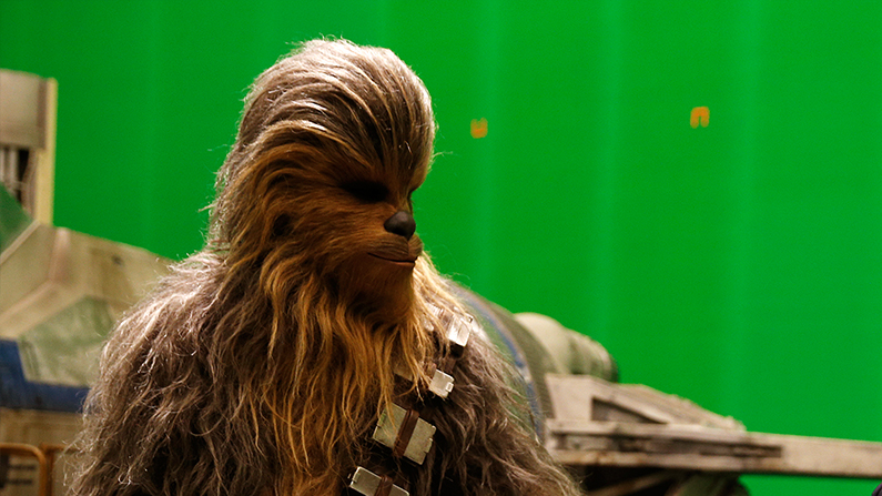 Chewbacca the Wookie, a Star Wars star (Adrian Dennis-WPA/Getty IMages)