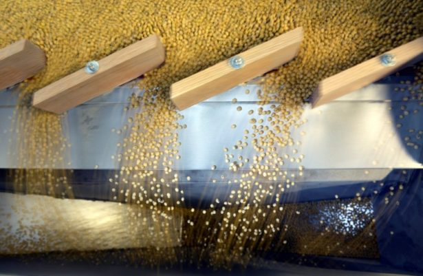 China Buys US Soybeans for First Time Since June
