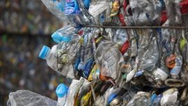 NSW Environment Minister Calls on Councils to Take Action Following China's 'Ban' on Imported Recycled Materials