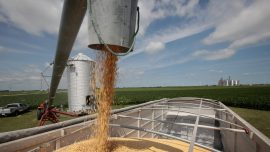 US Agriculture Optimism: Post US–China Deal