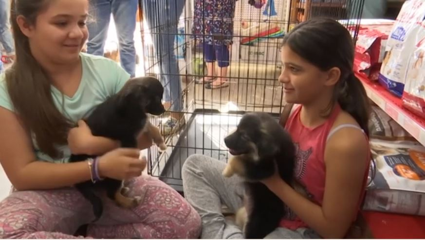 Two girls holding puppies.