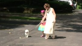 Illinois Mom Investigated for Letting 8-Year-Old Walk Dog Alone