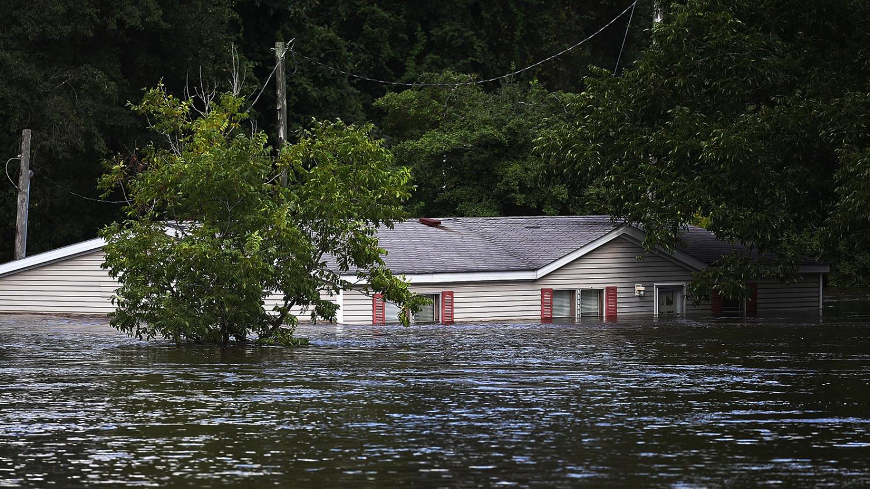 если картинки на ферме ураган украшенные