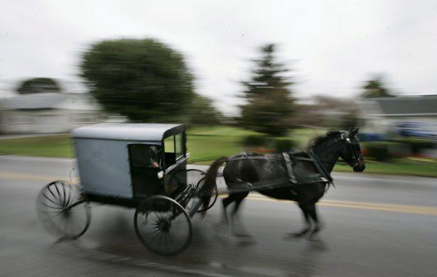 horse pulling Amish buggy
