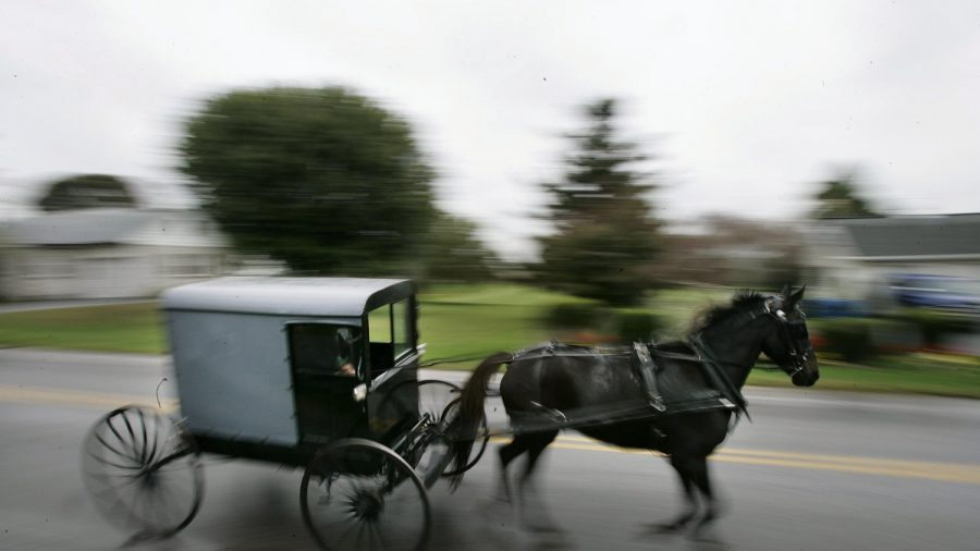 8-Year-Old Killed When Truck Strikes Horse-Drawn Carriage