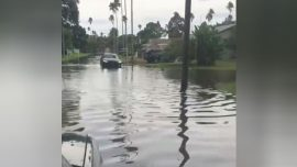 Video Shows Flash Flooding in St. Petersburg as Hurricane Michael Approaches Florida