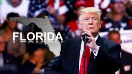 Trump Calls on Florida Elections to Be Called for Republicans, Alleges Fraud