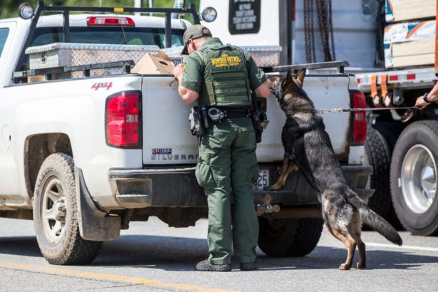 a US border patrol agent inspects a car