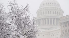 First Snow of the Season Hits Nation's Capital