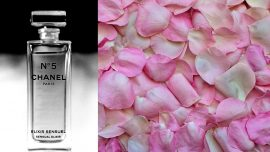 Skills Related to Traditional Perfume Making From Region in France Inscribed By UNESCO