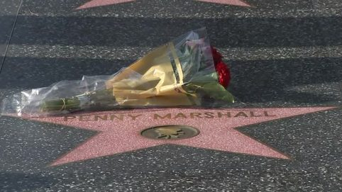Fans Remember Penny Marshall at Her Hollywood Star