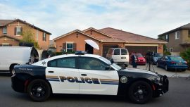 Authorities: Teen Apparently Mauled to Death by Dogs