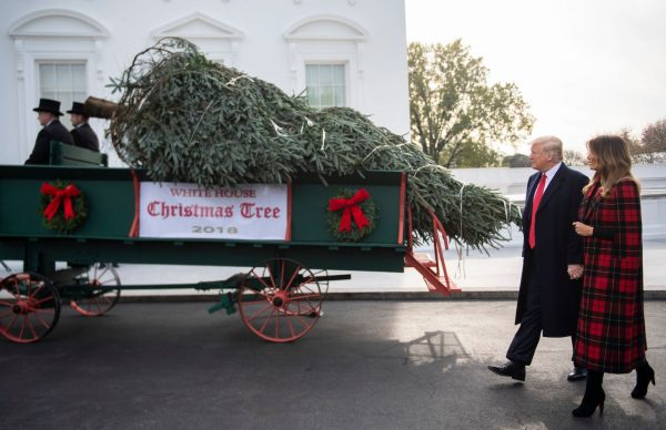 trump-and-melania-white-house-christmas-tree-arrives-600x388