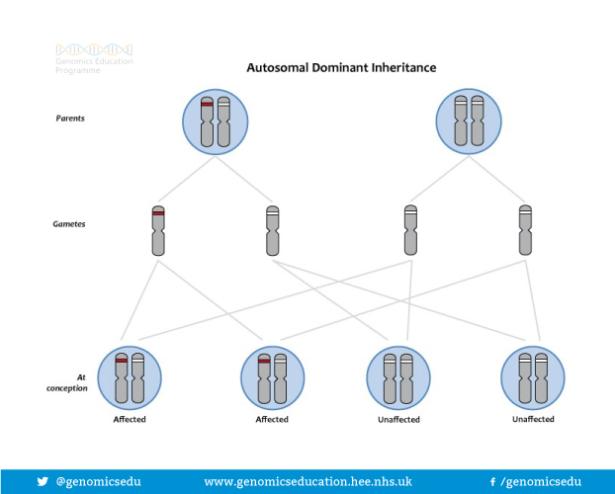 Inheritance diagram
