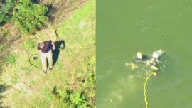 Florida Suspect, Unable to Swim, Jumps Into Lake in Attempt to Avoid Arrest