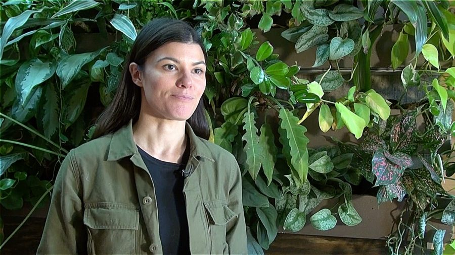 Woman Takes a Greener Path, Grows Career and Life out of a Forest in Her Apartment