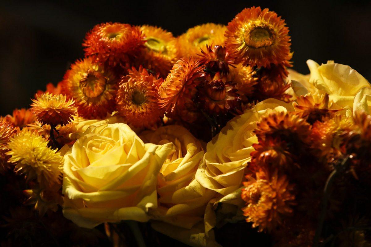 """Flower instillation at """"Flower Power"""" Philadelphia"""