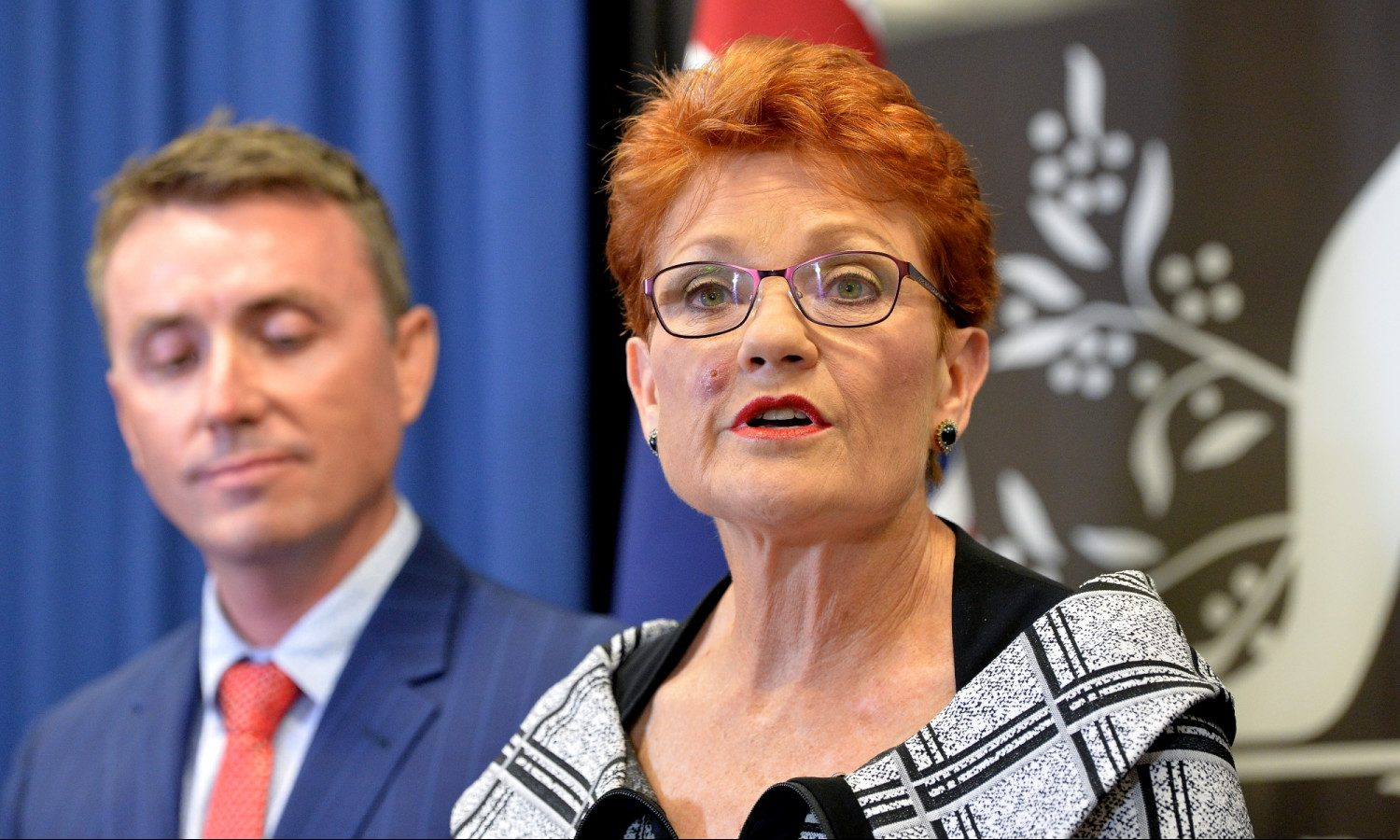 Australia's Pauline Hanson to Preference Coalition on 'How to Vote' Cards in 4 Key Seats