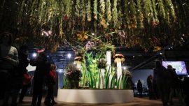 Philadelphia Flower Show Has '60S Vibe With 'Flower Power'