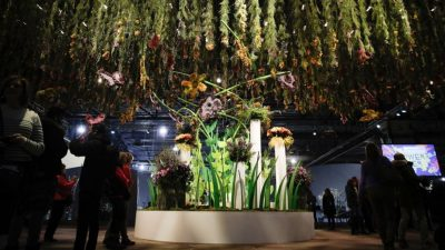 Philadelphia Flower Show Has '60S Vibe With 'Flower Power'