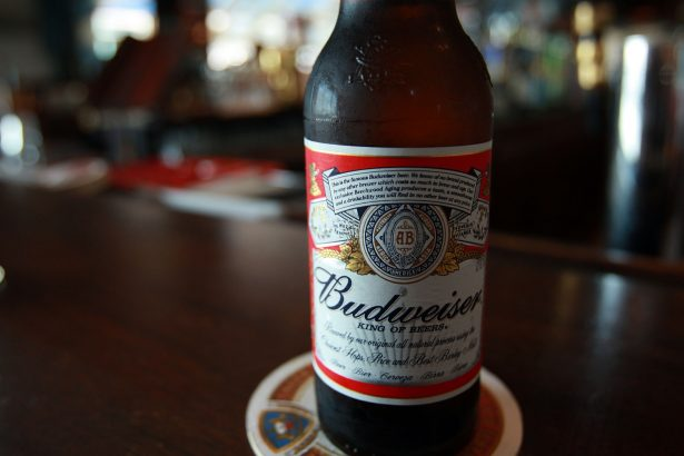A bottle of Budweiser beer is displayed at a bar