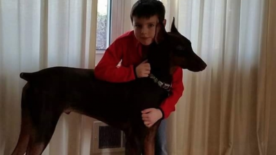 A 10-Year-Old Boy Sells His Toys to Pay for His Dog's Medical Treatment