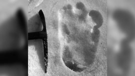 'Yeti' Footprints Sighted Claims Indian Army Tweet, Sparks Social Media Reaction