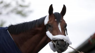 Maximum Security Arrives at Monmouth, Pointed to Haskell