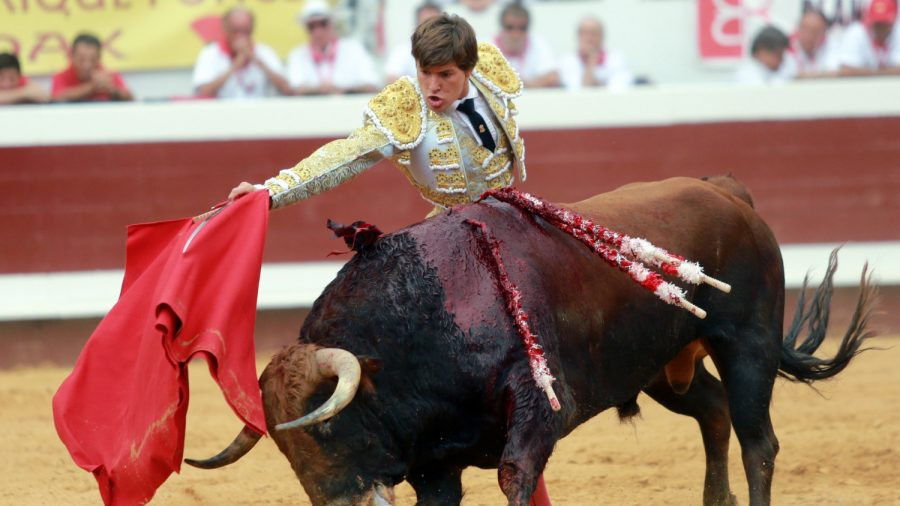 French Matador Gets Gored up His Rectum