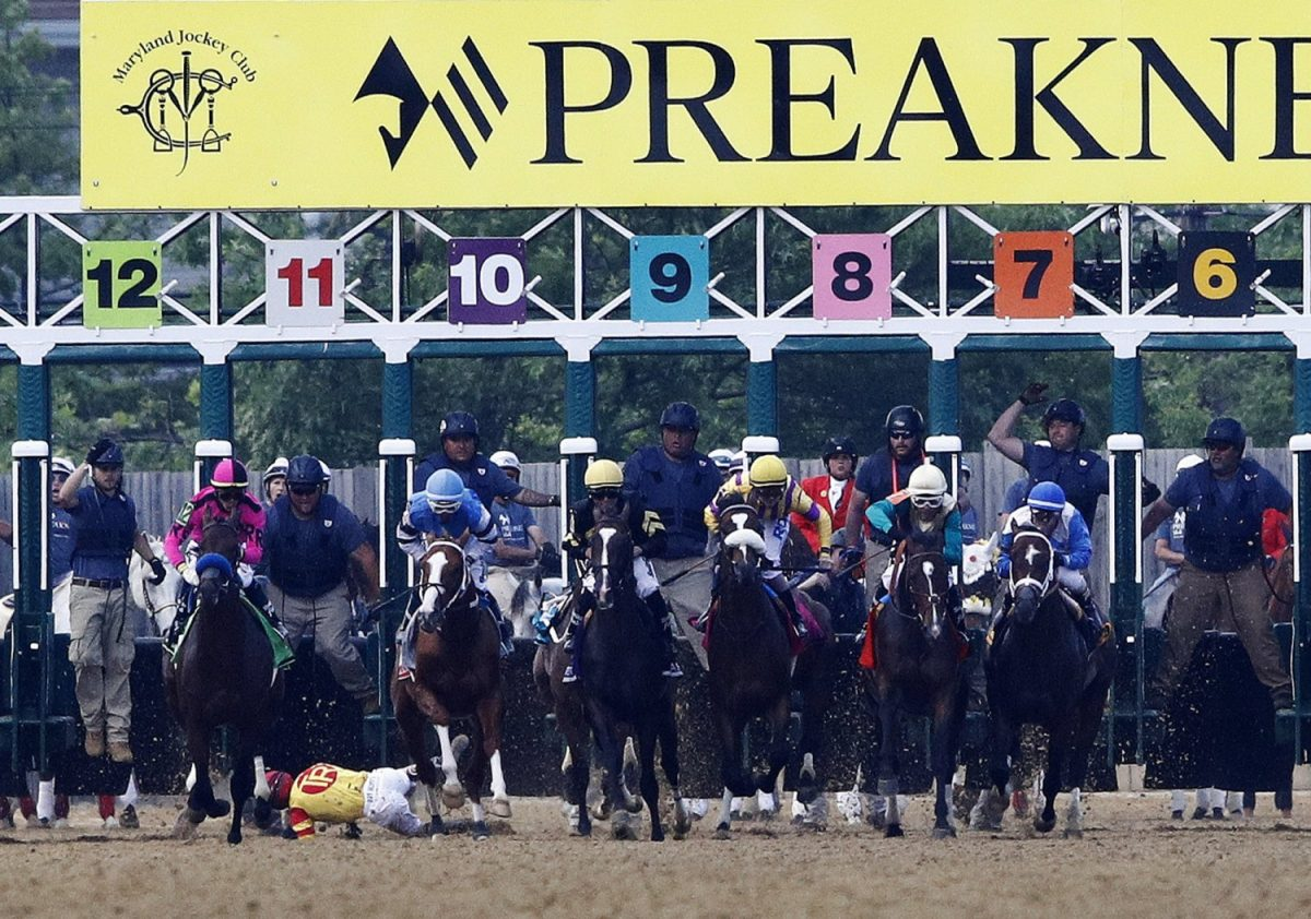 Preakness Stakes horse race 3