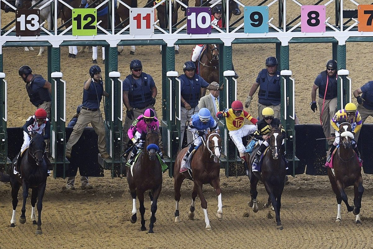 Preakness Stakes horse race 5