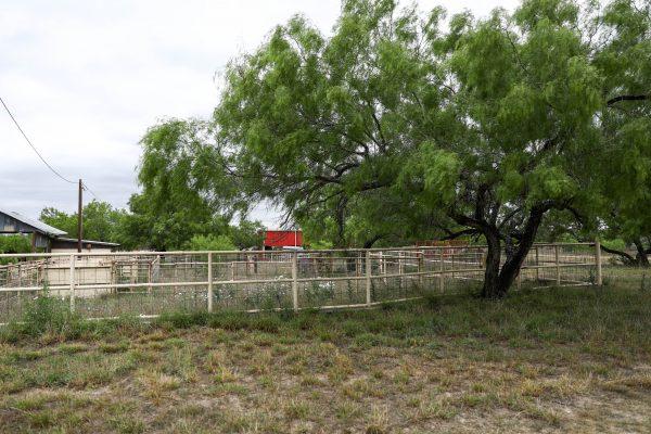 The empty cattle yards on La Anacua Ranch near Rio Grande City