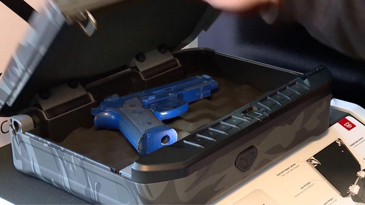 case to store gun