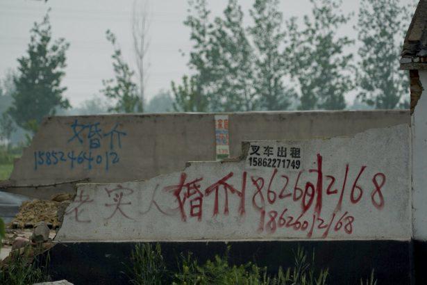 marriage agent advertising pakistani bride china pei county