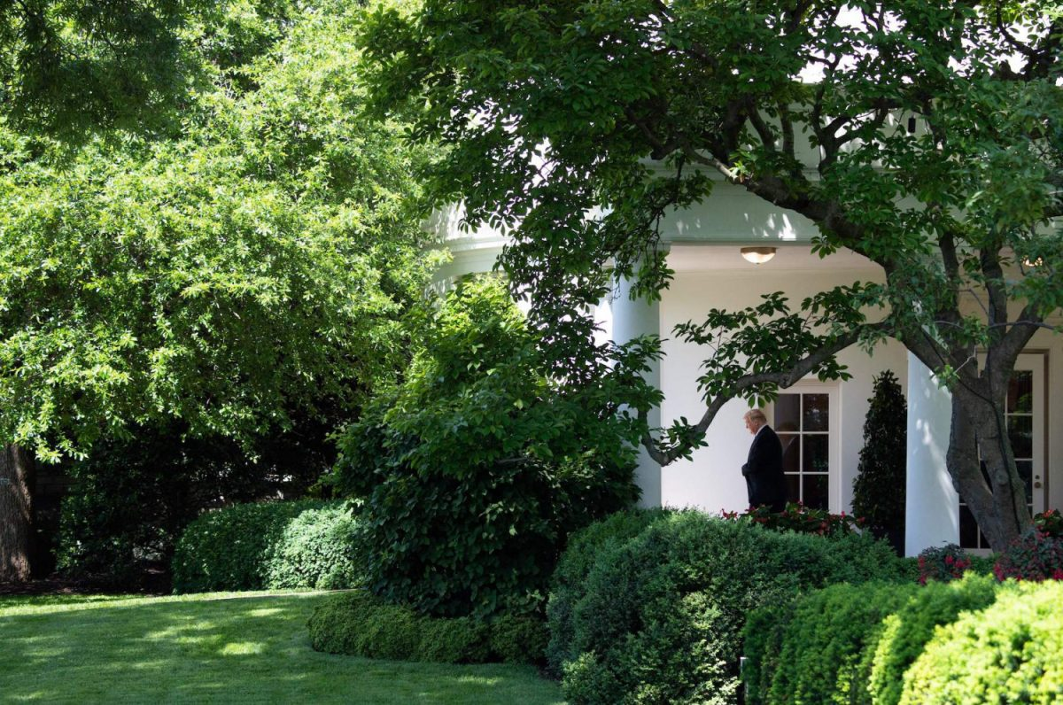 president donald trump 2