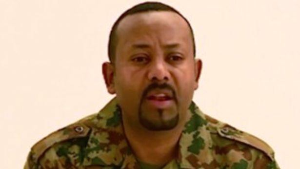 Ethiopia's Army Chief, Top Regional Officials Killed in Northern Coup Attempt