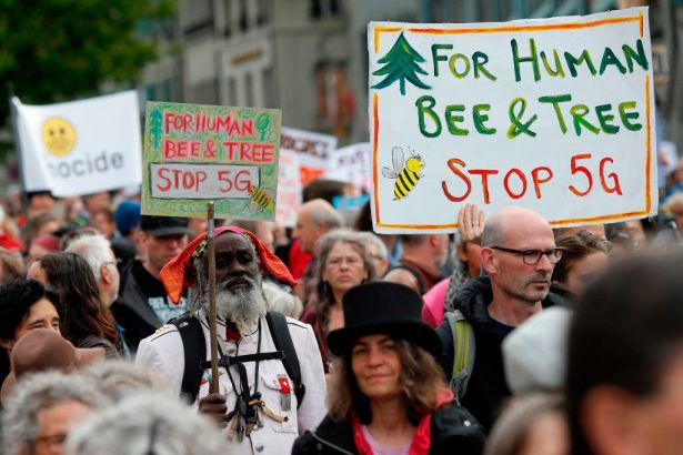 Demonstrators hold placards reading 'For Human Bee and Tree'