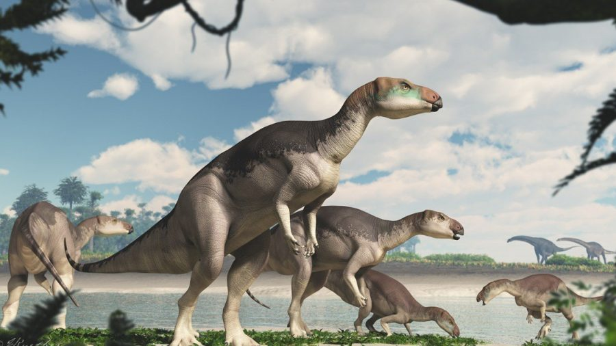 Dinosaur Herd Discovered in Australian Outback For the First Time in History