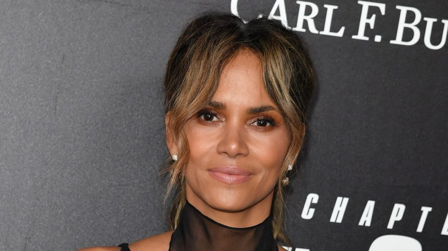 Man Tries to Steal Halle Berry's Home With Fake Deed: Report