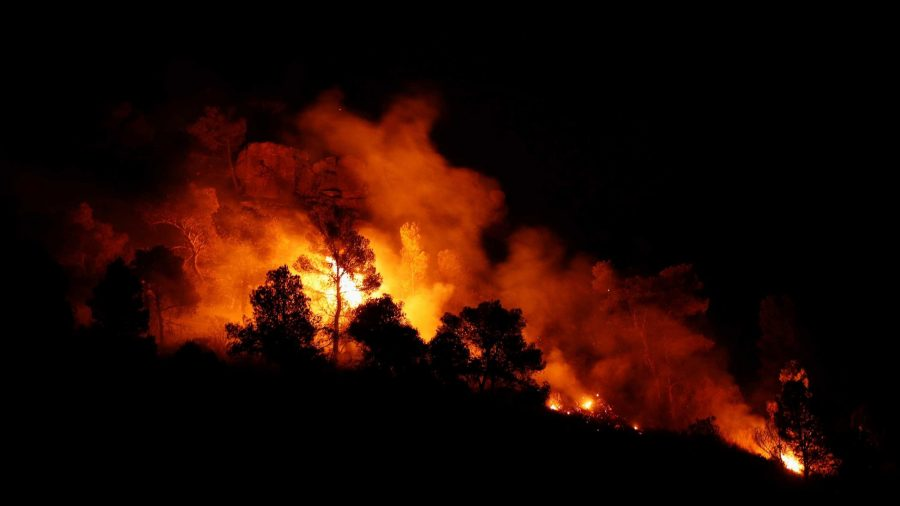 It's so Hot in Spain That Manure Self-Ignited, Sparking a 10,000-Acre Wildfire