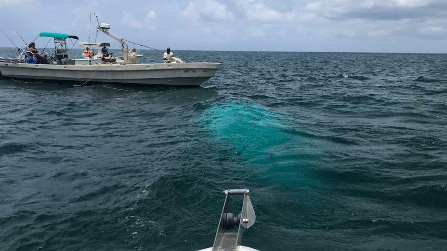 Investigators Recover Helicopter That Crashed in Bahamas, All Victims Identified
